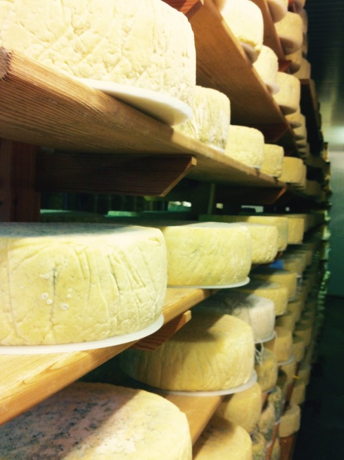 Cheese Rack